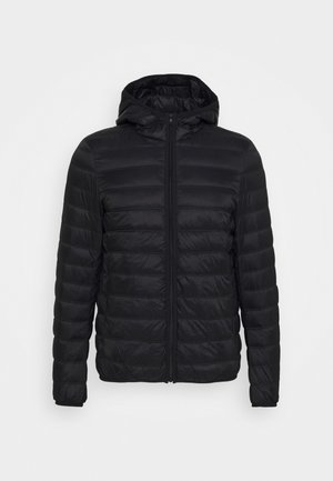 OUTERWEAR - Down jacket - black