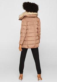 Esprit Collection - MIT 3M® THINSULATE-FÜLLUNG - Winter jacket - brown - 2