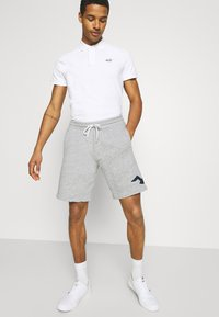 Hollister Co. - EXPLODED ICON - Shorts - grey - 3