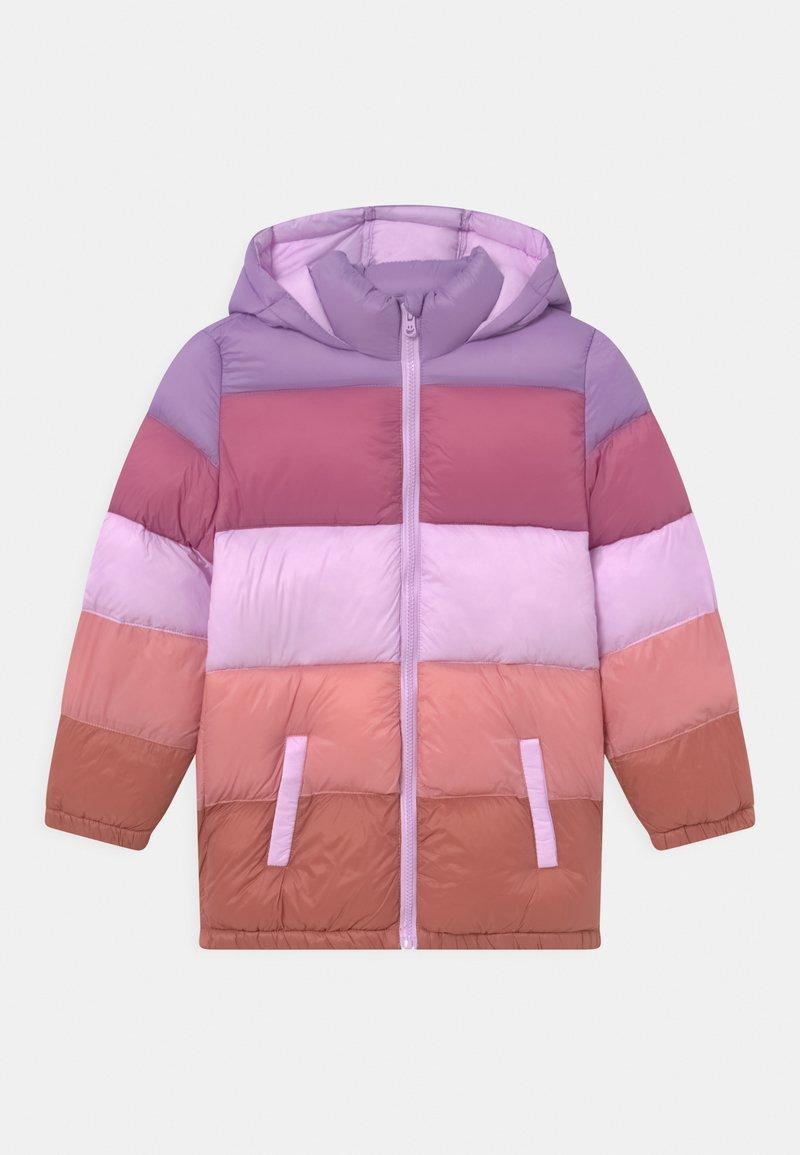 Cotton On - FRANKIE PUFFER - Winter coat - tulip splice