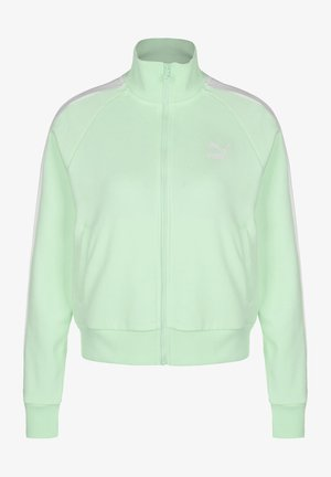 CLASSICS T7 - Training jacket - mist green