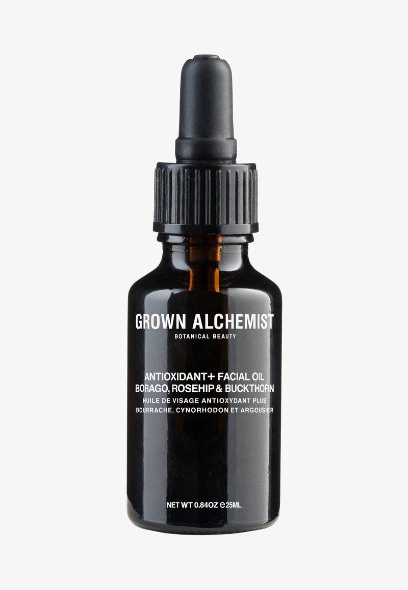 Grown Alchemist - ANTIOXIDANT+ FACIAL OIL BORAGO, ROSEHIP & BUCKTHORN BERRY - Face oil - -