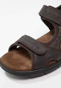 Panama Jack - SALTON BASIC  - Sandalias de senderismo - brown - 5