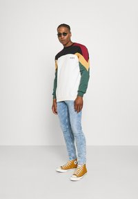 Kaotiko - UNISEX CREW DOWNTOWN - Sweatshirt - multicolor - 1