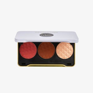 REVOLUTION X PATRICIA BRIGHT FACE PALETTE - Palette pour le visage - you are gold (medium)