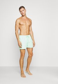 Rip Curl - VOLLEY - Swimming shorts - light green - 1