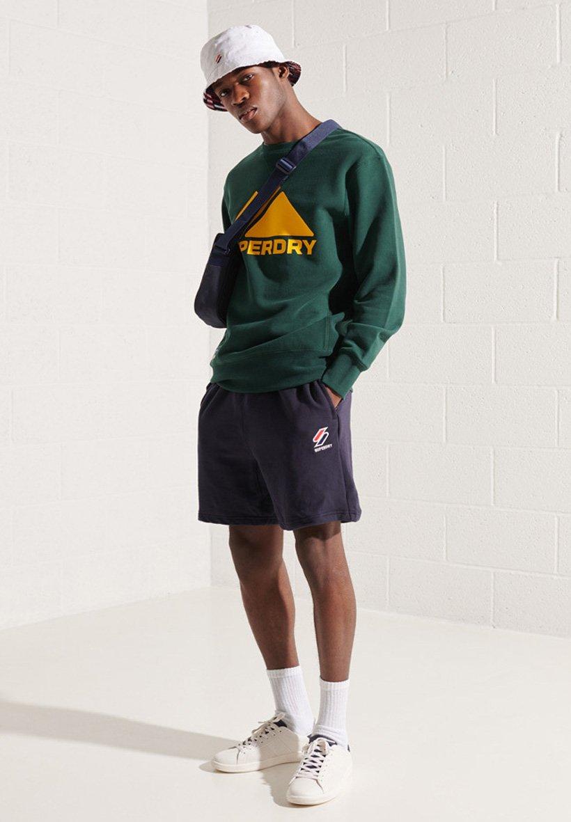 Men MOUNTAIN  - Sweatshirt