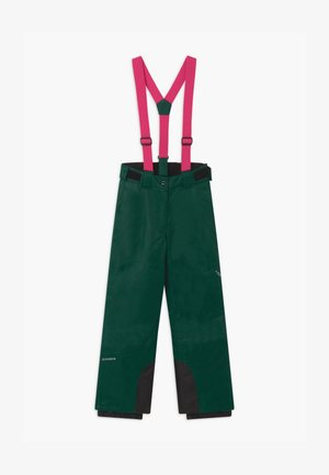 CELIA UNISEX - Snow pants - antique green