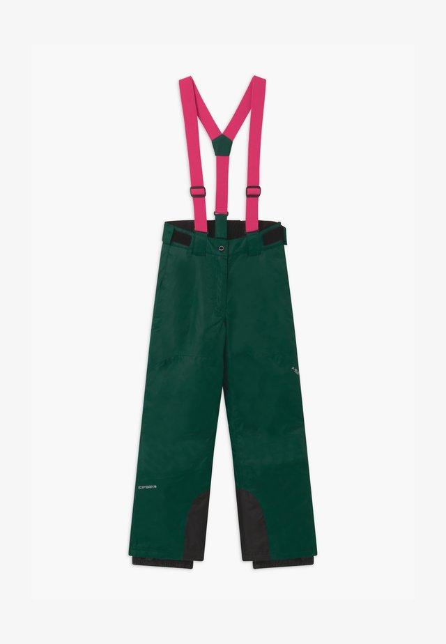 CELIA UNISEX - Pantalon de ski - antique green