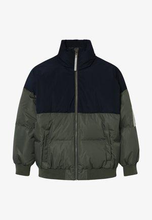 CHAD JACKET - Down jacket - beetle