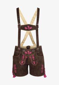 Almsach - Leather trousers - braun - 0