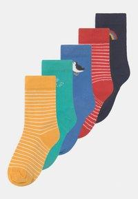 Frugi - FINLAY 5 PACK UNISEX - Socks - multi-coloured - 0