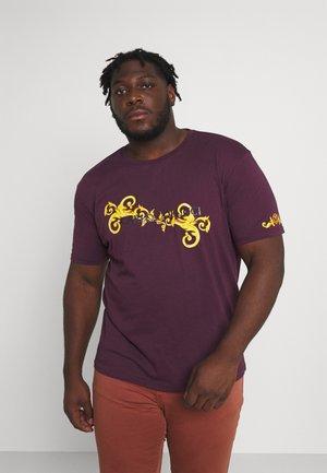RANKE BIG - T-shirt print - bordeaux