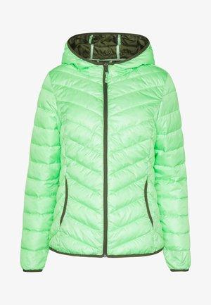 LIGHT PADDED JACKET - Winter jacket - soft neo green