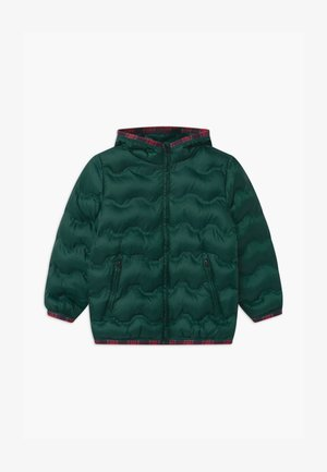 HARRY ROCKER - Winter jacket - dark green