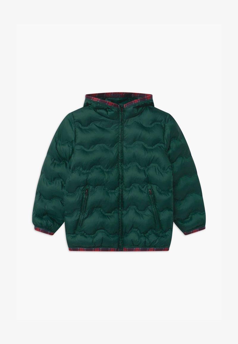 Benetton - HARRY ROCKER - Winterjas - dark green