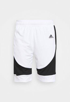 PREMIUM BASKETBALL TEAM SHORTS - Pantalón corto de deporte - white