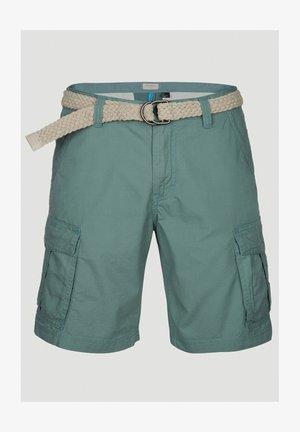 BEACH  - Shorts - arctic
