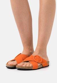 Zign - Mules - orange - 0