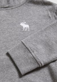 Abercrombie & Fitch - ICON - Hoodie - grey - 3