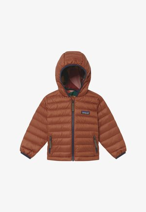 BABY REVERSIBLE HOODY - Down jacket - camel/multi-coloured