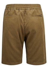 NN07 - Shorts -  olive - 1