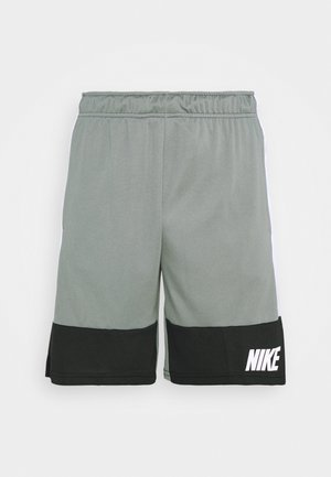 DRY SHORT - Korte sportsbukser - smoke grey/black/white