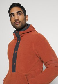 The North Face - CARBONDALE - Hoodie - brown - 3