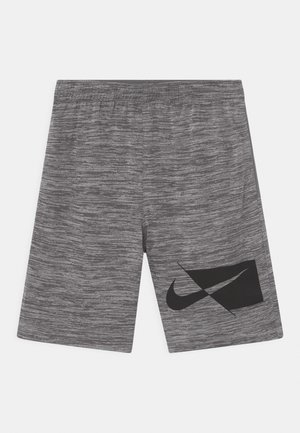 Shorts - smoke gray heather
