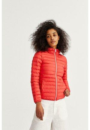 CAZADORA - Winter jacket - rojo