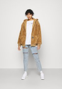 BDG Urban Outfitters - ROSIE HOODED - Zimní bunda - parchment - 1