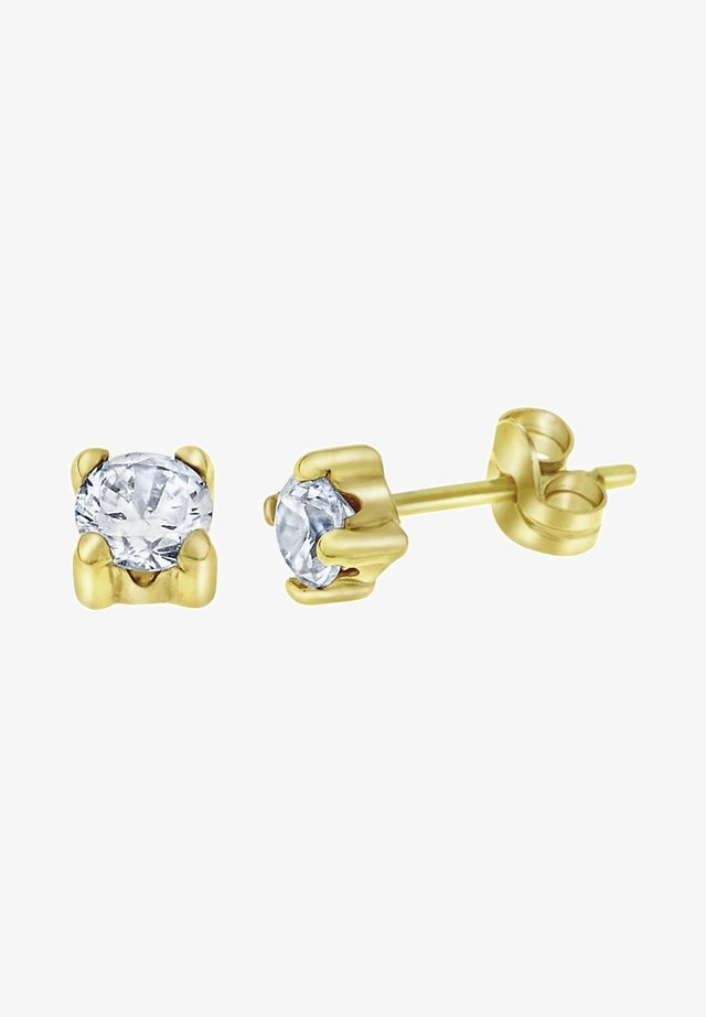 14 CT GOLD - Oorbellen - gold-coloured