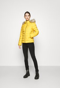 Tommy Jeans - BASIC HOODED JACKET - Doudoune - yellow - 1