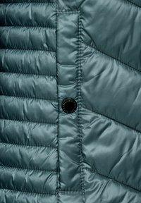Cecil - IN STEPP OPTIK - Winter jacket - grün - 5