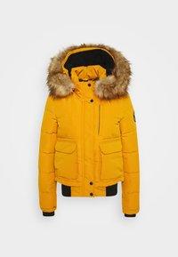 EVEREST - Winter jacket - ochre