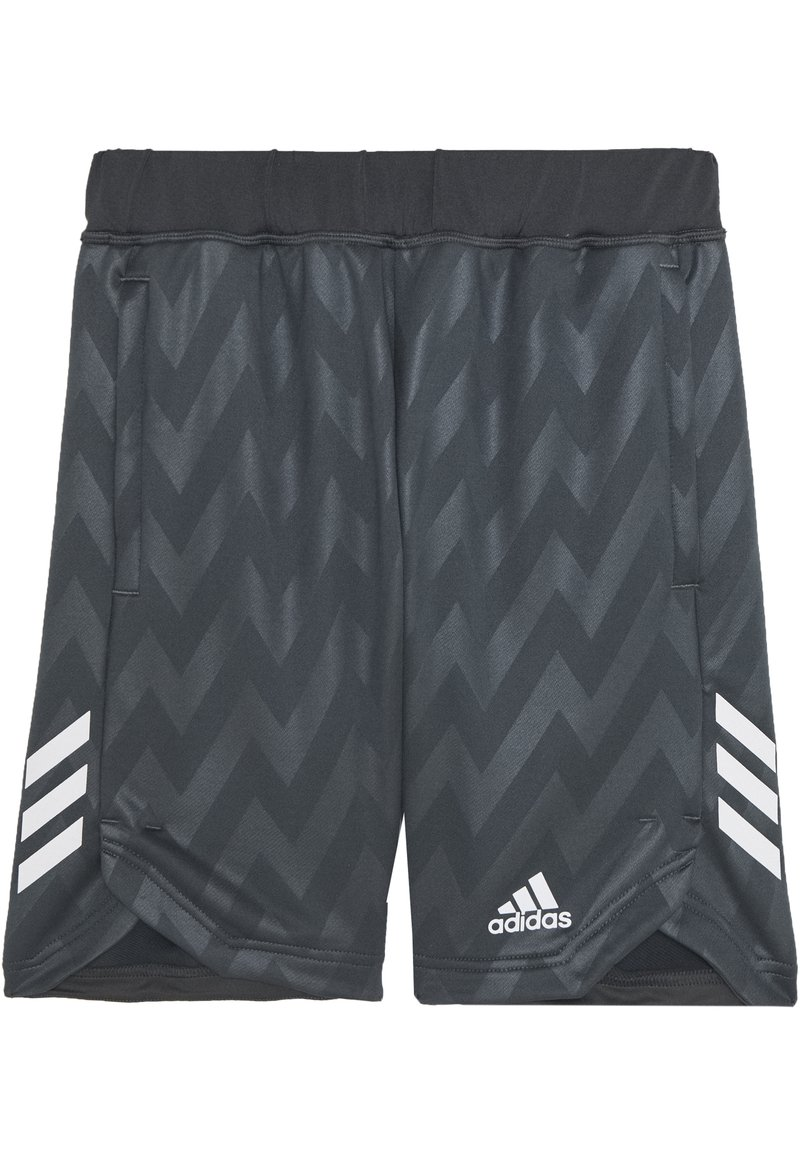 adidas Performance - JB TR XFG SH - Sportovní kraťasy - grey six/white
