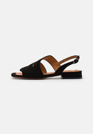TEDAN - Sandals - black