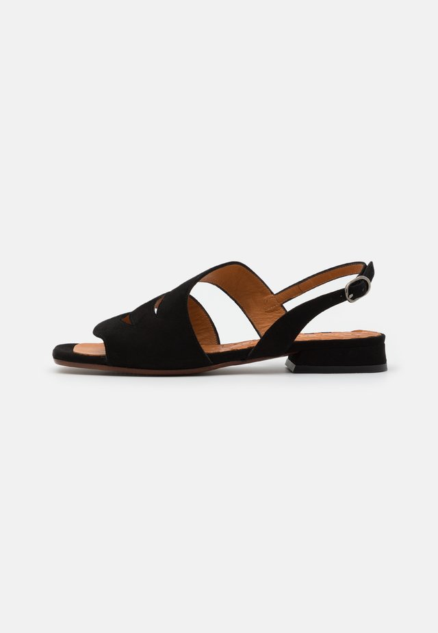 TEDAN - Sandaalit nilkkaremmillä - black