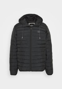 SCALY  - Winter jacket - black