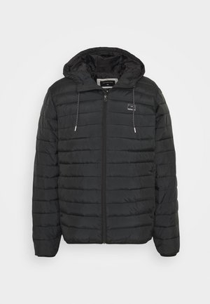SCALY  - Winter jacket - black