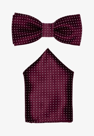 ONSTBOX THEO TIE SET - Pocket square - cabernet/white