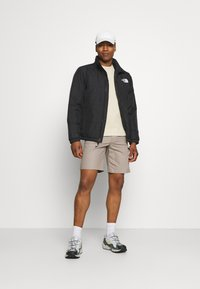 The North Face - CARGO - Shorts - mineral grey - 1