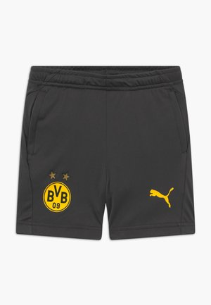 BVB BORUSSIA DORTMUND TRAINING SHORTS WITH POCKETS WITH ZIPPER - Sports shorts - asphalt/cyber yellow