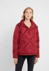 Save the duck - MEGGA - Winter jacket - mineral red - 0