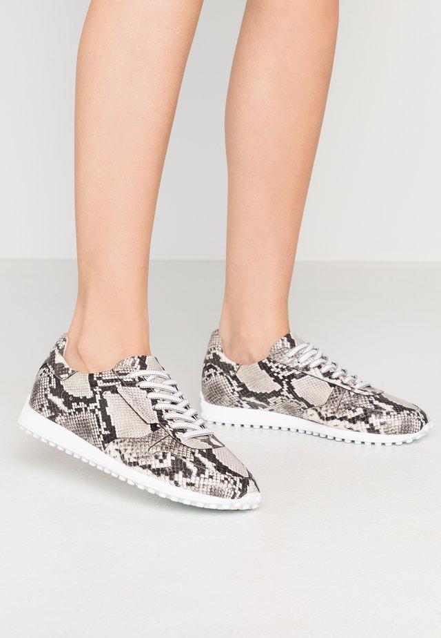 CLUB - Sneakersy niskie - grey