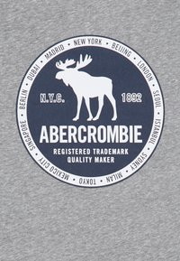 Abercrombie & Fitch - VINTAGE PRINT LOGO - Long sleeved top - grey - 2
