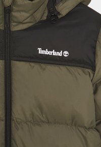 Timberland - PUFFER JACKET - Winter jacket - khaki - 4