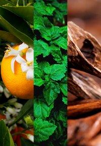 JOOP! Fragrances - JOOP! PARFUM POUR FEMMES EAU DE TOILETTE - Woda toaletowa - - - 2