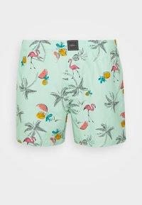 Hollister Co. - SINGLE PATTERN - Boxer shorts - mint - 3