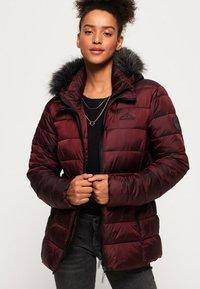 Superdry - TAIKO  - Winter jacket - purple - 0